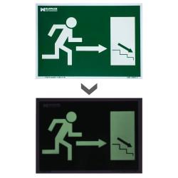 Cinta Persiana Wolfpack Bicolor 18 mm. Rollo 6 metros