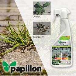 Expositor Rotuladores Retoque Madera 24 piezas.